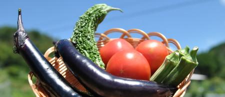 Vegetableblog